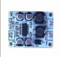 Art. No. AU-04   30W Mono Digital Audio Amplifier